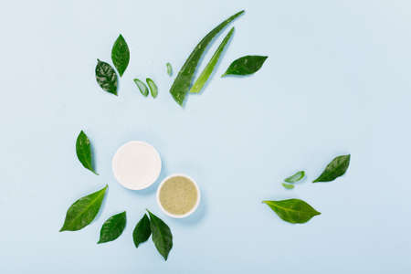 Cosmetic Skin care products, aloe vera and green leaves on blue background. Natural cosmetic product concept, top view, copy space. 免版税图像