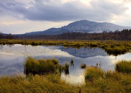 Marsh and mountain photo