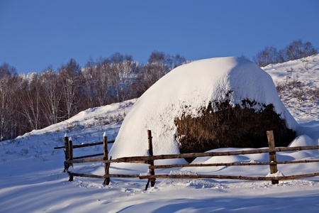 hayrick: Snow-covered hayrick with a wooden fence