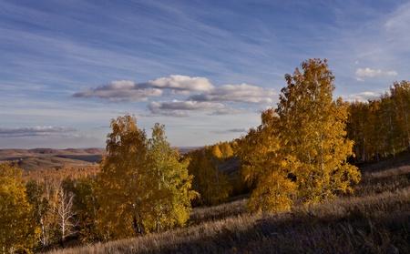 Autumn landscape, Russia, South Urals photo