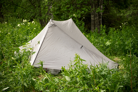 Camping tent pitched in the forest Stock Photo