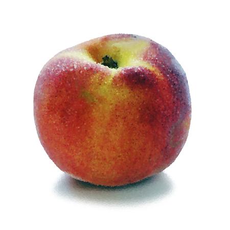Ripe peaches. Vector illustration EPS 10