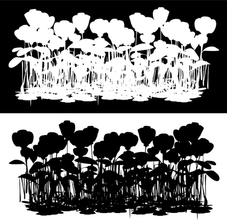 black and white flowers field Vector