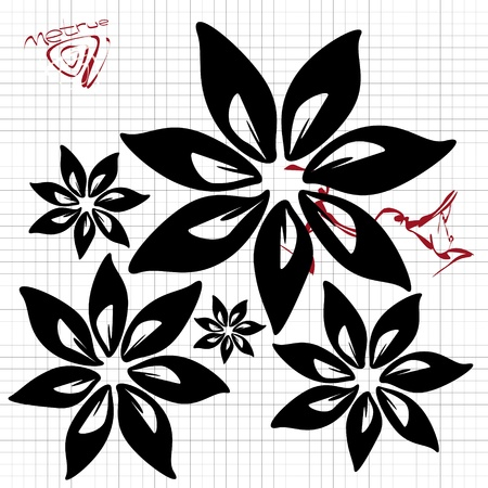 fine abstract black flowers on squared paper  Vector