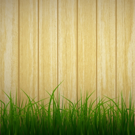 garden design: new realistic grass on wooden planks background can use like natural design Illustration