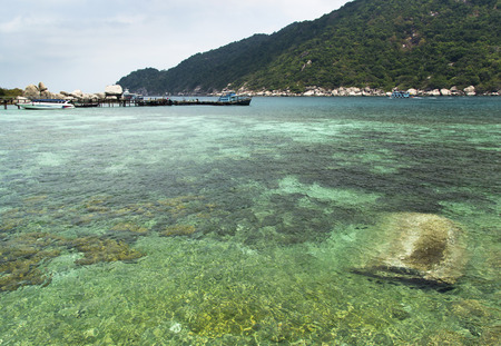 koh tao: harbor of Koh Tao and Koh Nangyuan islands in Thailand. diving paradise with clear sea water and beach rocks