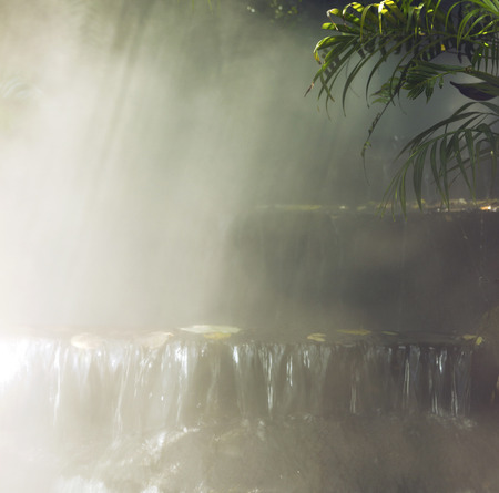 beautiful small waterfall and palm tree in a fog. cool, summer background