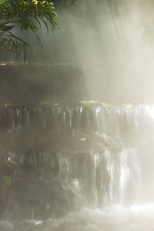 samll: beautiful tropical, waterfall and palm tree in a fog. cool, summer background