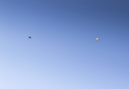 parachutists: a couple of parachutists planing in the blue sky. extreme, outdoor sports concept