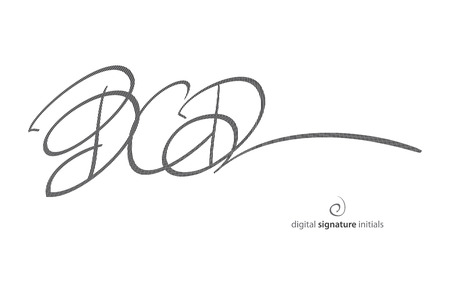 rightful: abstract, fictitious, digital signature icon protected with encryption technology. vector initials autograph, legal concept