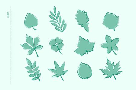 Conjunto de iconos aislados de hojas dibujadas a mano. Vector deja la colección de logotipos. Contorno de línea delgada, elementos de diseño estacional. símbolo de planta natural Logos