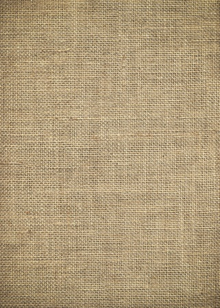 A texture from the bag we use to collect christmas presents each year. I'm sure it also has other possibilities. Stock Photo - 10285359