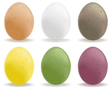 A selection of colored speckled eggs. Illustration