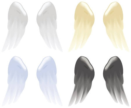 Soft angel wings in white, gold, blue and black isolated on white  Vector