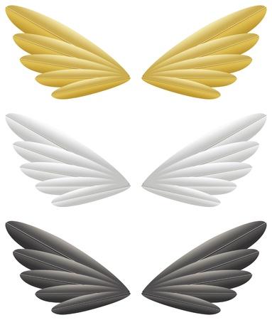 白い背景で隔離された金、白と黒の翼  イラスト・ベクター素材