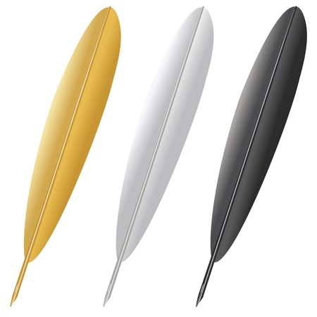 Quill pen in gold, grey and black isolated on white background. Vector