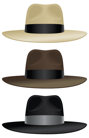A wide brimmed fedora in classic colors. Stock Vector - 23297627
