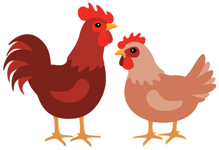 A graphic hen and rooster couple on white.