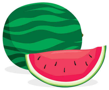 Full and sliced watermelon in solid colors  Illustration