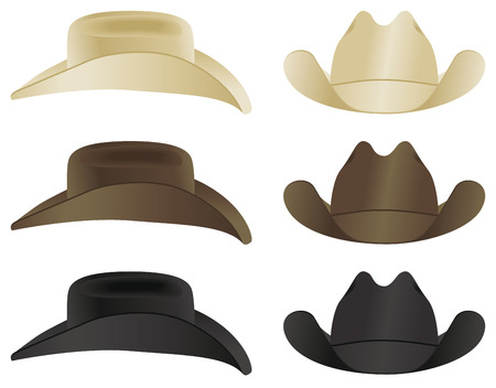 A country and western cowboy hat selection. Vettoriali