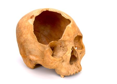 Old broken skull against white background photo