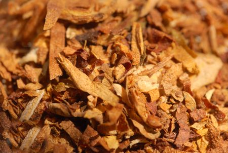macro pattern of dried tobacco leaves