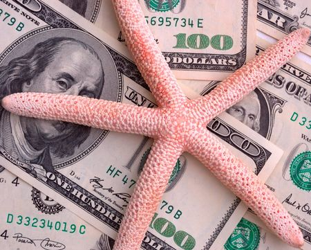 mach: How mach is the summer travel? Close-up of 100 dollar bill and starfish