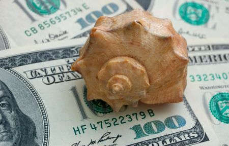 How mach is the summer travel? Close-up of 100 dollar bills and shell photo