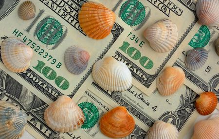 How mach is the summer travel? Close-up of 100 dollar bill and shells of different colors photo