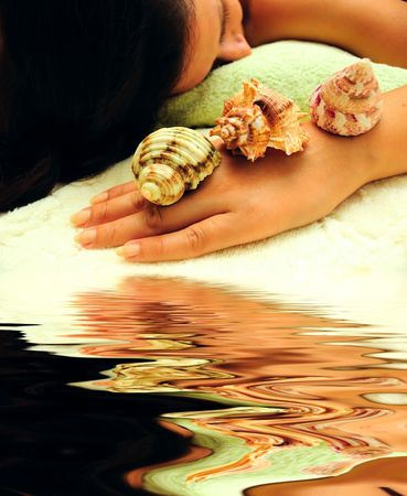 concept of spa - female and shells photo
