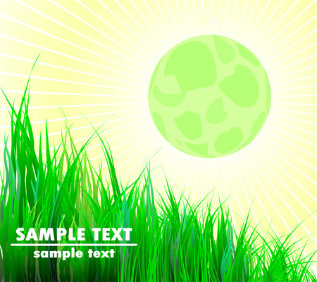bright full moon and green grass Stock Vector - 4212617