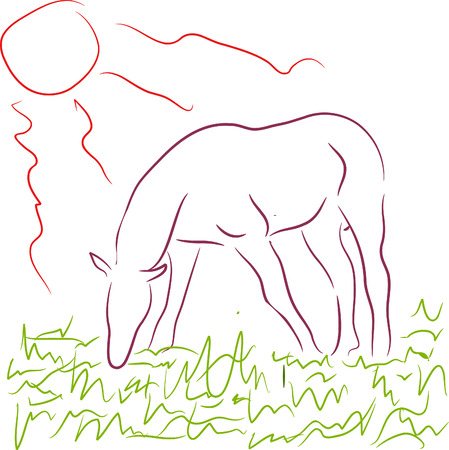 horse pasturing between green grass ander sun Vector