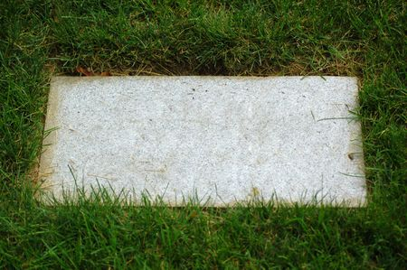 maybe: stone plate in grass (maybe tombstone) with copyspace
