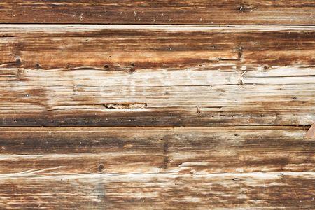 cedar: pattern of obsolete wood plank
