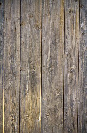 planks photo