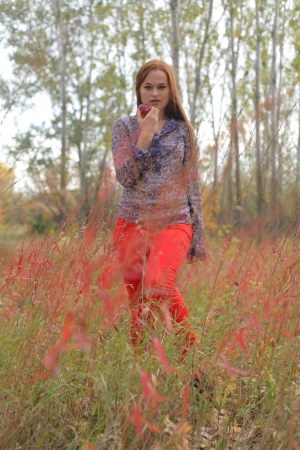 Beautiful young redhead in a autumn meadow photo