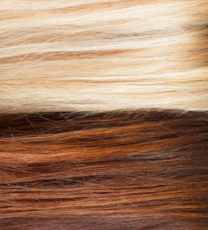 highlighted hair: brown and blond hair background closeup macro hair salon or treatment concept