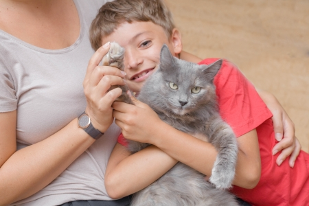 gato gris: madre e hijo con el gato gris que se divierten en interiores Foto de archivo