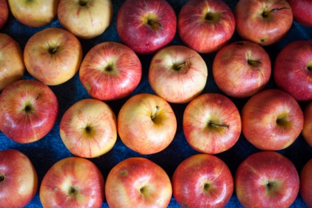 sidelit: fresh apple - abstract natural background sidelit. Lots of Red ripe apples background on the street market.