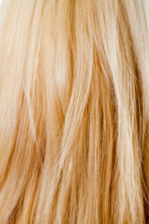 blond hair macro as background photo