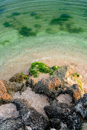 Seascape. Tropical beach from above. Green ocean shallow  water photo