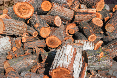 corded: Corded wood (fireplace log pieces) on the ground Stock Photo