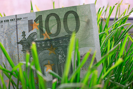economic activity: 100 euro bill growing in the green grass, financial growth concept. Stock Photo
