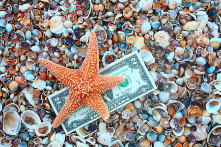 seashells: Starfish over two dollar banknote on coast covered with seashells, shot with copyspace.