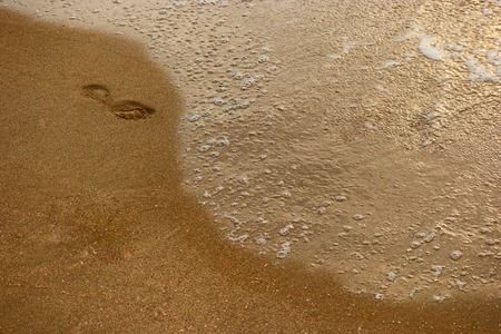 footstep: Lonely footstep on sandy beach and place for text, top view
