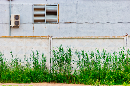 Industrial buiding behind concrete wall with reed grows in front of