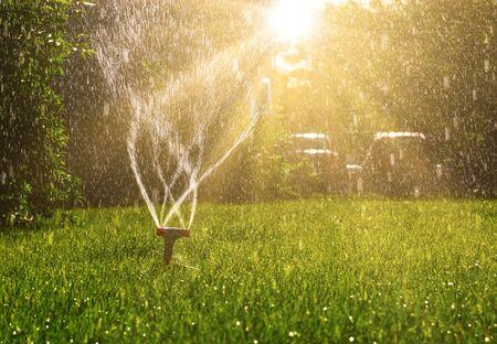 Arroseur de pelouse avec beaucoup d'espace de copie et le soleil brille de l'arrière