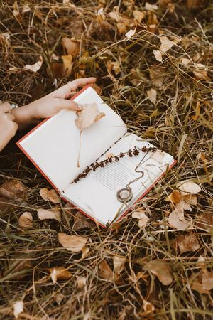 In the autumn grass covered with fallen dry leaves lies an open book of poetry, in it nested stem of grass and old medallyon. Photo an uncovered volume of poetry in the autumn grass. Imagens