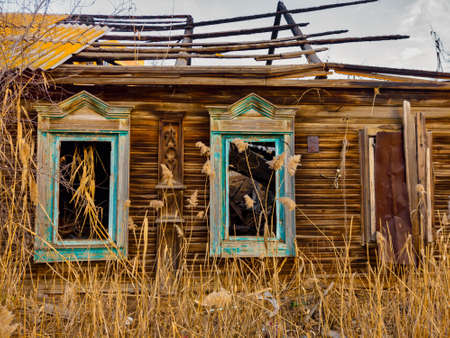 Weathered wooden hut in russian style half abandoned with reed growing all about