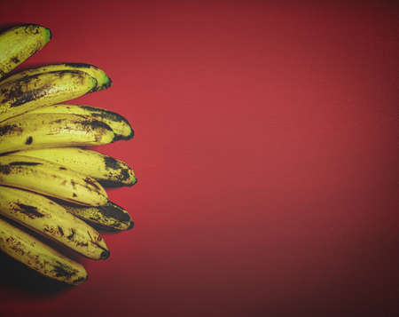 Retro styled image of Organic bananas on red background top view. Bunch of bananas is lying on orange background with dark spots marking ripening process.